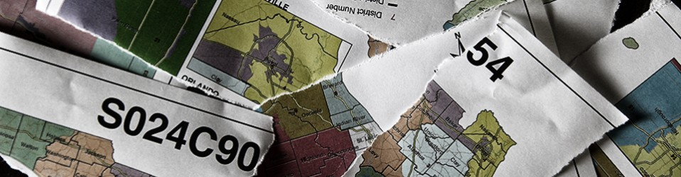 Where Do We Go From Here? The Uncertain Future of Redistricting in Florida